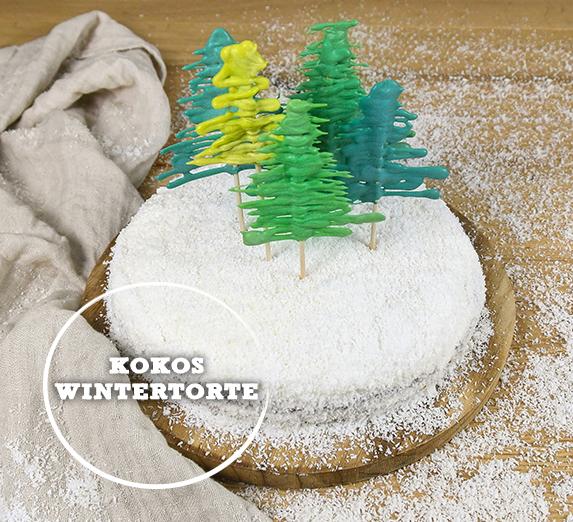 Kokos-Wintertorte